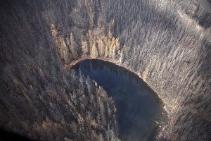 Continúa la búsqueda de excursionista desaparecido cerca del Columbia River Gorge